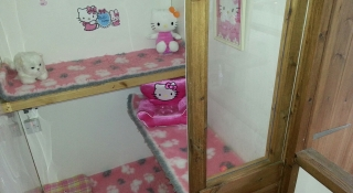 The Hello Kitty Suite